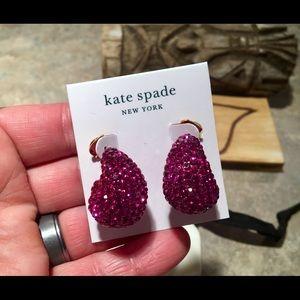 Kate Spade Pink Pave Crystal Wide Resin Hoops